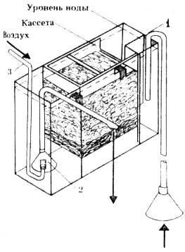 Донный фильтр в аквариуКак сделать ушки лисичСхема